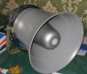 громкоговоритель 10ГР-38
